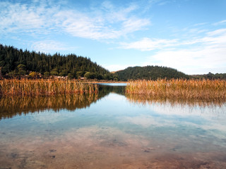 Kai Iwi Lake, New Zealand - Stock Image