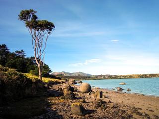 Beautiful nature of Northland, Koutu Boulders in New Zealand - Stock Image