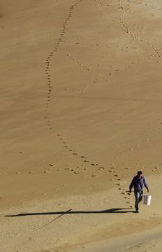 A fisherman casts a long shadow as he leaves a path of foot prints in the sand along Curl Curl Beach..
