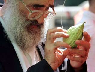 An ultra-Orthodox Jew takes a closer look at an etrog, a yellow citrus fruit, at a special market in..