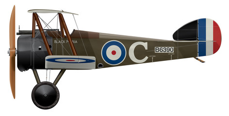 Sopwith Camel B6390 Black-Maria - Side Profile View