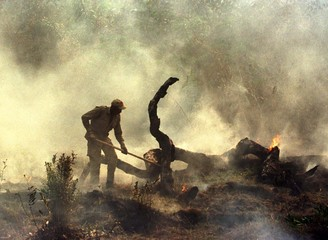 A firefighter swats down flames in the smoke-filled savannah near the outskirts of Apiau in southwes..