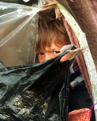 An ethnic Albanian refugee child peers out from a make shift tent in a field where more than 25,000 ..