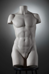 naked 3d mannequin torso body male