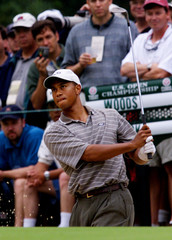 TIGER WOODS HITS OUT OF BUNKER AT PINEHURST.