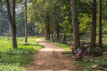 Bike in the Junge, Cambodia