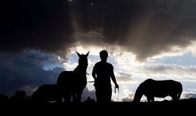 silhouette of person with horse