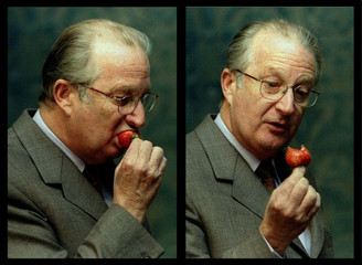 - COMBO PHOTO- Combination picture showing King Albert II tasting the first Belgian strawberry of th..