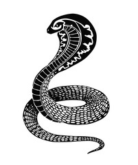 Black snake illustration or tattoo design isolated on white background