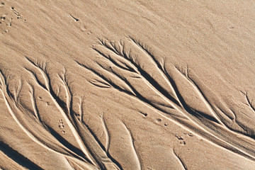 abstract sand ornament