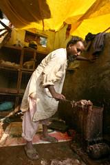 A man works in a poultry market in Old Delhi