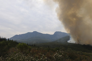 wildfire on mountain