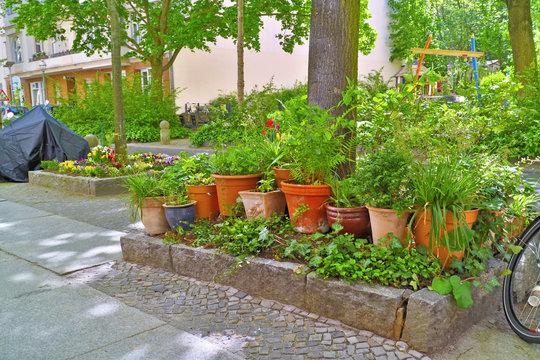 Buntes Blumenbeet / Urban Gardening
