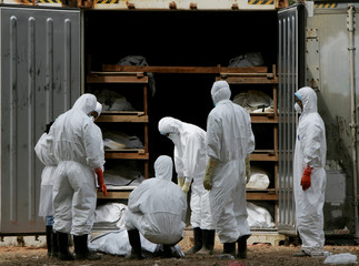 Medical staff inspect a body at a make-shift morgue where bodies of victims of the tsunami are ...