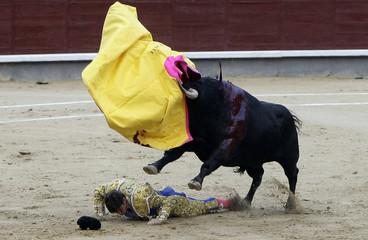 "Bullfighter Julian Lopez ""El Juli"" is tackled by a bull during a bullfight at the Ventas bullring in Madrid"
