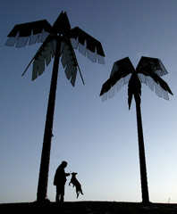 ARTIFICIAL PALM TREES ARE SILHOUETTED AGAINST THE SKY AS A MAN PLAYS WITH HIS DOG IN HAMBURG.