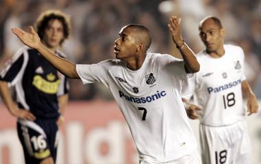 Santos' Robiunho celebrates his goal against Universidad de Chile during a Libertadores Cup match in ...