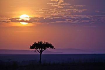 Sunset, Masai Mara, Kenya