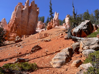 Bryce red sandstone formations