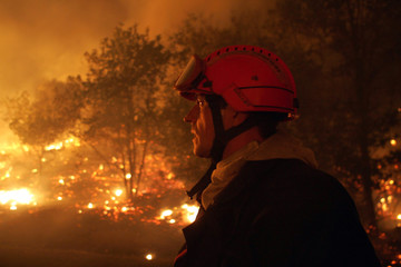 A French firefighter stands near the flames from a wildfire which is burning a forest in France.