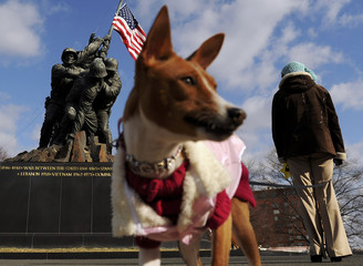 A woman walks her dog before a ceremony in honor the 64th anniversary of the raising of the US flag on the island of Iwo Jima during World War II, at the Marine Corps War Memorial in Arlington, Virginia