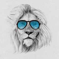 Portrait of lion drawn by hand in pencil in sunglasses