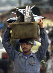 AN INDIAN MAN CARRIES CONTAINER FULL OF FISH AT THE FOOD MARKET NEAR JAMA MOSQUE IN OLD DELHI.