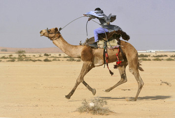 Israeli Bedouin takes part in a camel race near the southern Israeli city of Be'er Sheva
