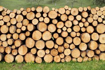Holzstämme im Wald