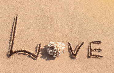 Love word written from corals on the beach