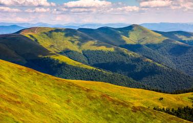 grassy meadow on hillside of mountain ridge