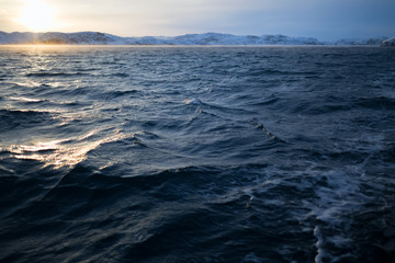 Barents Sea in Arctic Ocean. Kola Peninsula, Russia Wall mural