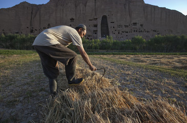 A man goes through his harvested wheat as the Small Buddha niche is seen in the background in Bamiyan