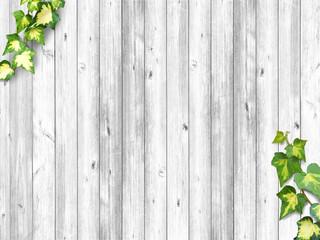 ツタと白い木目