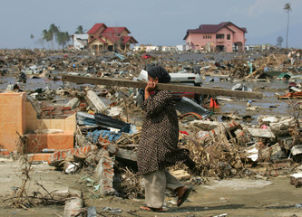 An Acehnese woman carries a piece of wood in the tsunami-devastated city of Banda Aceh.