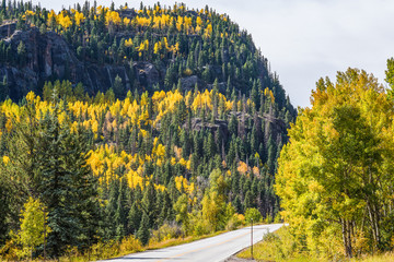 Highway road on mountain with golden aspen trees in Colorado
