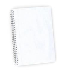 Vertical gridded paper notebook