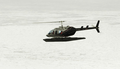 A helicopter carrying Humane Society of the United States observers flies over the ice in search for sealing activity in the southern Gulf of St. Lawrence
