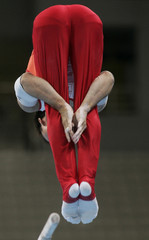 Japan's Takehiro Kashima performs a routine on the parallel bars at the Athens 2004 Olympic Games.