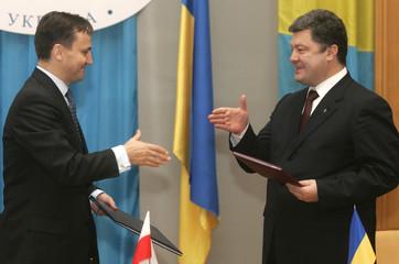 Ukraine's Foreign Minister Poroshenko shakes hands with Poland's Foreign Minister Sikorski in Kiev