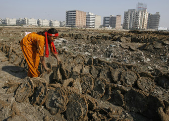 A woman sorts cow dung which is used as cooking fuel in New Delhi