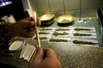 An employee rolls joints containing weed at a coffee shop in the southern Dutch city of Bergen op Zoom