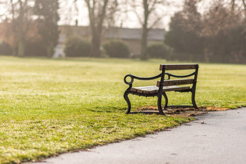 Day view empty bench in the autumn park