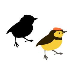 small bird vector illustration style Flat silhouette