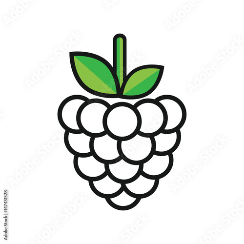 """""""cartoon raspberry outline"""" Stock image and royalty-free ..."""