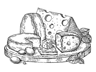 Plate cheese engraving style vector illustration