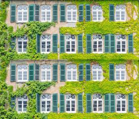 Search Photos Fassadenbegrunung