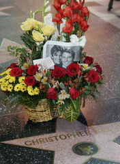 Flowers and photo of Dana and Christopher Reeve are placed on Hollywood Walk of Fame star