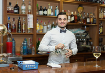 Male bartender in modern bar .