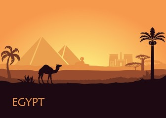 Camel in wild Africa pyramids landscape background illustration